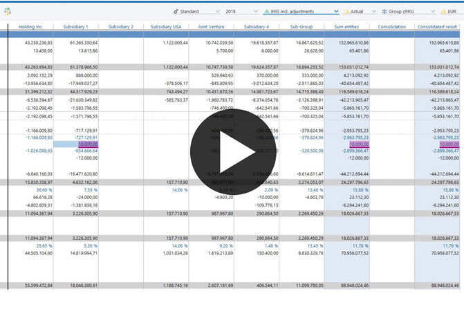 video software demonstration financial consolidation