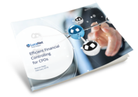whitepaper efficient financial controlling for cfos